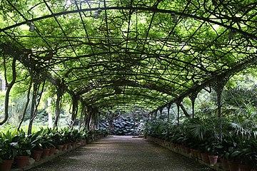 JardinBotánicolaConcepción1.jpg