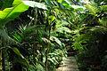 Jardin Botanico (4).jpg