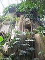 Jardin des plantes Paris Rocher1.JPG