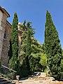 Jardines de la Iglesia de Castril (45261081782).jpg