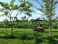 Jegrička, park prirode, Zmajevo 06.jpg