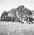 "Jewish Buffs (חיילים עברים בשירות רג'ימנט מזרח קנט, ""באפס"")-ZKlugerPhotos-00132hd-090717068512410d.jpg"