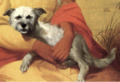 John Mix Stanley - Hawaiian dog, 1849.png