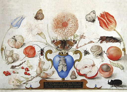 Joris Hoefnagel - Vase with marigold, other flowers and butterflies, surrounded by flora and fauna (2)