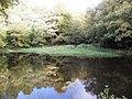 Jowler Lower Dam - geograph.org.uk - 1540252.jpg