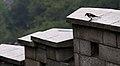 KOCIS Korea Seoul Fortress 20130924 15 (9911032344).jpg