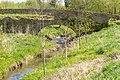 Kalletal - 2015-05-02 - LIP-013 Aberg-Herrengraben (53).jpg