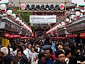 Kaminarimon Crowds (226039185).jpeg