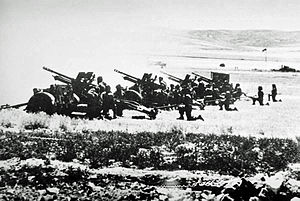 Battle of Karameh - Jordanian artillery battery at Karameh, 21 March 1968
