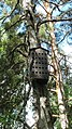 Kellokoski - Centrum Balticum...Bird Apartment - panoramio.jpg