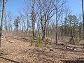 Kings Mountain National Military Park - South Carolina (8557813615) (2).jpg
