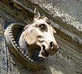 Koňská hlava.jpg