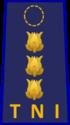 Kolonel pdh au.png