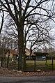 Kolonie Briese, Linden und Eiche 2.jpg