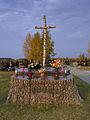 Komunalny Cmentarz Południowy w Warszawie 2011 (14).JPG
