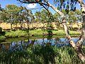 Kororoit Creek, Albion.jpg
