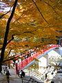 Kourankei taigetsukyo-bridge.jpg
