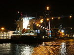 Kristin Schepers by night pic5.JPG