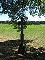 Kuosėnai 40105, Lithuania - panoramio (1).jpg