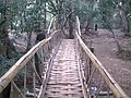 Kuruva dweep(Island) Bamboo . - panoramio.jpg