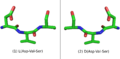 L-Peptide-D-PeptideMirrorImages.png