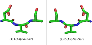 L-Peptide Asp-Val-Ser and its mirror image.