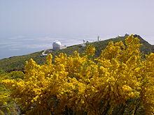 220px-La_Palma-observatory.jpg