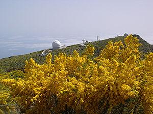 astronomy Observatory La Palma 2004