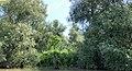 Lacul Beleu priveliște 26.jpg