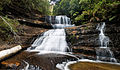 Lady Barron Falls Mt Field National Park.jpg