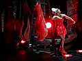Lady Gaga Americano meat dress 02.jpg