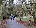 Lagan towpath, near Shaw's Bridge - geograph.org.uk - 701242.jpg