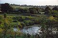 Lake (1438422429).jpg