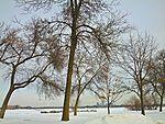 Lake Calhoun.jpeg
