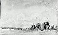 Landscape MET 37.113.7.jpg