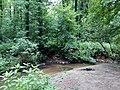 Landschaftsschutzgebiet Waldgebiete bei Dielingdorf und Handarpe LSG OS 00025 Datei 5.jpg