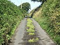 Lane at Longcross - geograph.org.uk - 506254.jpg