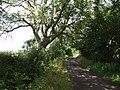 Lane to Crock Street - geograph.org.uk - 481734.jpg