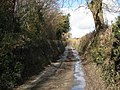 Lane west of Ugbrooke Stream - geograph.org.uk - 1751848.jpg