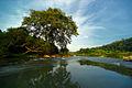 Laos (7325886816).jpg