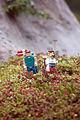 Legoland Windsor - Ramblers (2835856914).jpg
