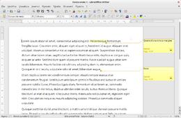 LibreOffice Writer 4.1.0 in esecuzione su Ubuntu