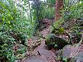 Lintang Trail (15580170247).jpg