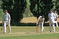 Little Hallingbury CC v. Thorley CC at Gaston Green, Essex 006.jpg