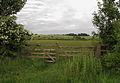 Long Meadow, Danesmoor 01.jpg