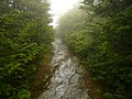 Long Trail - Mt. Mansfield VT - panoramio.jpg