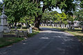 Looking N on East Tour Road - Glenwood Cemetery - 2014-09-14.jpg