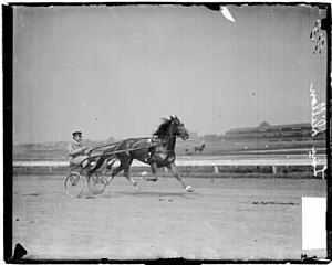 C.K.G. Billings - C.K.G. Billings with his horse Lou Dillon - 1903.