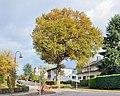 Luxemb Bridel oak rue Nic Goedert 01.jpg