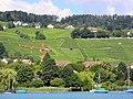 Männedorf - Zürichsee - Dampfschiff Stadt Zürich 2012-07-22 16-45-08 (P7000).JPG